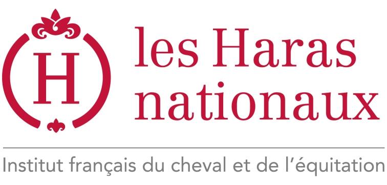 logo_HN_IFCE1
